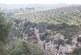 paesaggio2.jpg