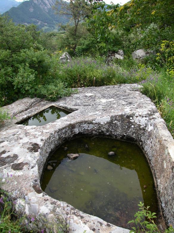 Albano di Lucania: palmento in un oliveto.