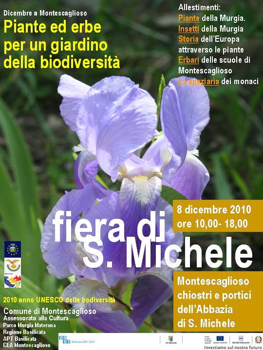 Fiera S. Michele 2010.