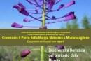 Biodiversità floristica del territorio della Murgia