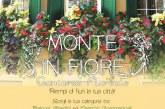 Monte in Fiore