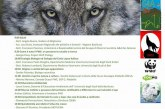 Universitaly Wolf Tour Matera