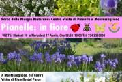 Visita Pianelle nel Parco della Murgia Materana.