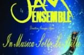 """CONCERTO """"IN MUSICA SOTTO LE STELLE"""""""