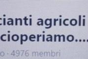 """CONTINUA LA LOTTA DI """"NOI BRACCIANTI AGRICOLI""""."""